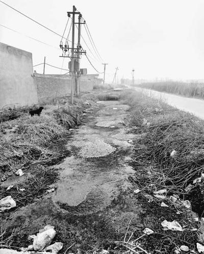 河南南阳城乡一体化示范区林庄村 猪粪排河中村庄遭污染